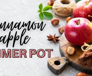 Cinnamon Apple Simmer Pot