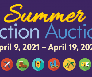 Summer Action Auction Preview Opens Early